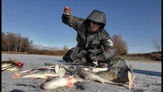 Зимняя рыбалка первый лед 2019