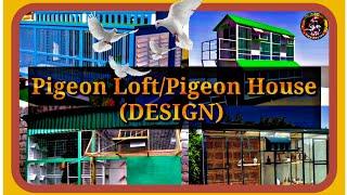 Pigeon Loft DESIGN|Pigeon House DESIGN