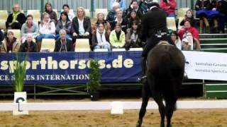 Tulara Balouch PSI Jumping with the Stars 2011. Outstanding Balou Du Rouet Gelding. Won Jumping with the stars overall as a 5 year old.