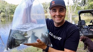 Stocking My Monster Bass Pond with THOUSANDS of Fish!