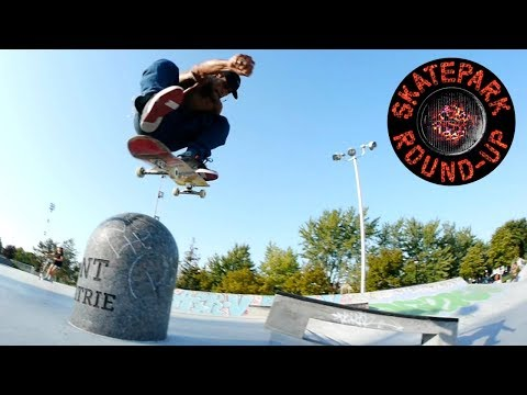 Skatepark Round-Up: DC Shoes