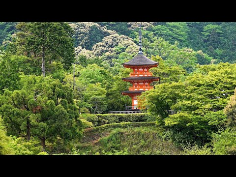 Download Kyoto Temples, Shrines & Gardens, Japan in 4K Ultra HD Mp4 HD Video and MP3