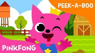 Peek-a-Boo | Peek-a, peek-a, peek-a-boo! | Healthy Habits | Pinkfong Songs for Children