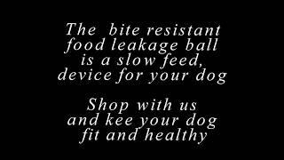 Fight Dog Obesity | Best Slow Dog Feeder Bowl Anti Choke |Free Shipping Worldwide |HeyGoodDog.com