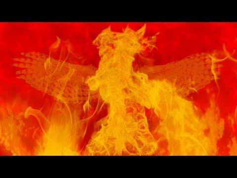d0257d762f1ba The Phoenix – Fall Out Boy (lyrics) – kineticscribe