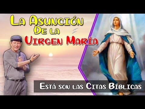 ¿Dónde aparece en la Biblia la Asunción de la virgen María? - P. LUIS TORO