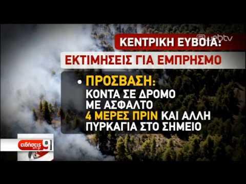 Σε εξέλιξη έρευνες για τα αίτια της πυρκαγιάς στην Εύβοια | 17/08/2019 | ΕΡΤ