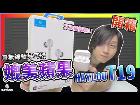 抽獎囉!! HAYLOU T19 真無線藍芽耳機 媲美蘋果 CP值超高 低延遲 實測 音色測試 麥克風抗躁 airpods pro 小米藍牙耳機AirDots Air2 可參考 【UNBOXING】
