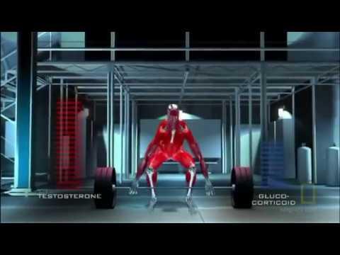 Jak trenować mięśnie pochwy