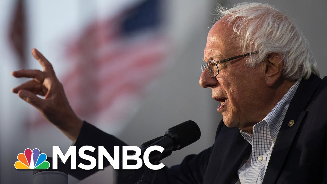 Bernie Sanders' Future With The Democratic Party | Andrea Mitchell | MSNBC thumbnail