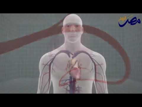 العرب اليوم - بالفيديو : تعرف على صحة قلبك من