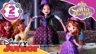Sofia The First |  Broomstick Dance | Disney Junior UK