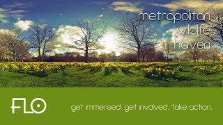 005 - Metropolitan Wildlife Haven