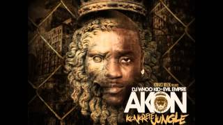 Akon - CaShin Out ( Official Video 2012)