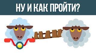 Смотреть онлайн Загадка на логику про овец и пастуха в горах с ответом