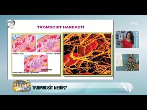 Trombosit nedir? Ne işe yarar?