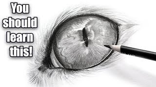 The Importance Of Black And White | Cat Eye Drawing