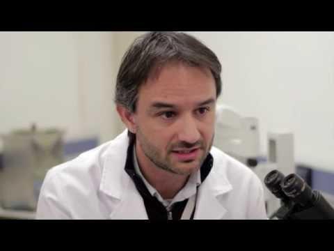 Hemoscansarea helmintiazei