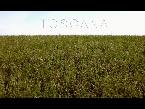 Toscana (Gladiator Soundtrack - Hans Zimmer - Now We Are Free)