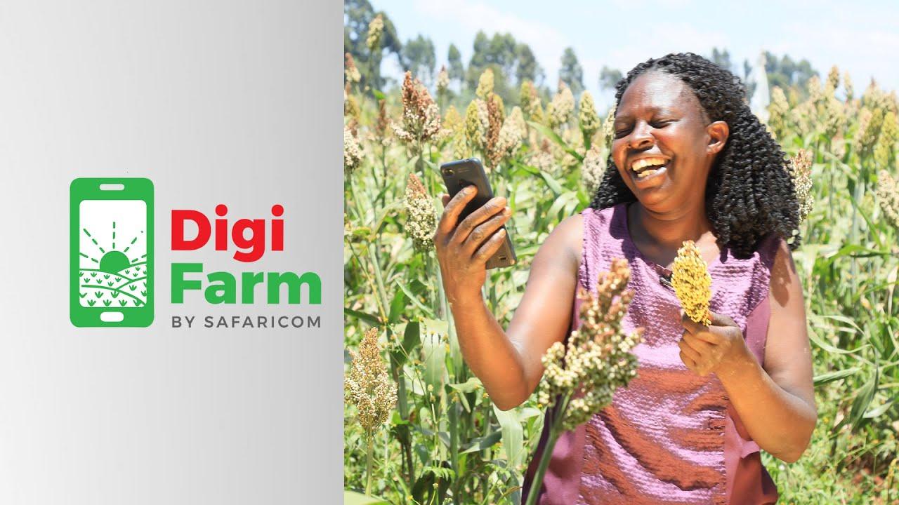 DigiFarm Aggregation in Makueni, Migori, Kakamega and Bungoma – Feb 2020