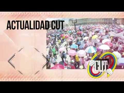 Actualidad CUT #44