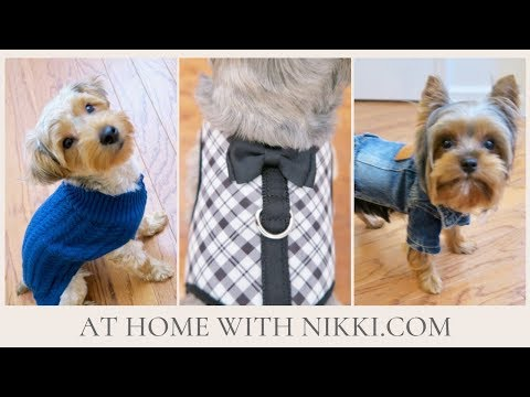 PET FALL CLOTHING HAUL 2018