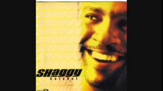 Shaggy - Why Me Lord