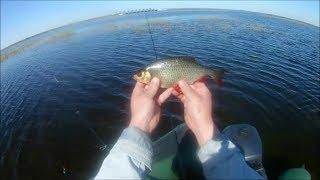 Рыбалка на финском заливе весной и летом
