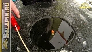 Отводной поводок на леща для поплавочной удочки