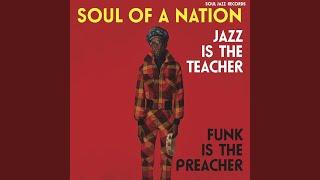 Nappy Dugout - Funkadelic