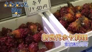 仰天ゴハン「新世代ホヤ料理」宮城県女川町