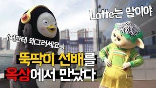 EBS 옥상에서 뚝딱이 선배님을 만났다 (feat. 역대급 깜짝손님)