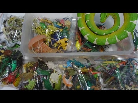 What's in the box: Small Plastic Animals! 100's of Reptiles, Fish, Dinosaurs, Bugs and more!