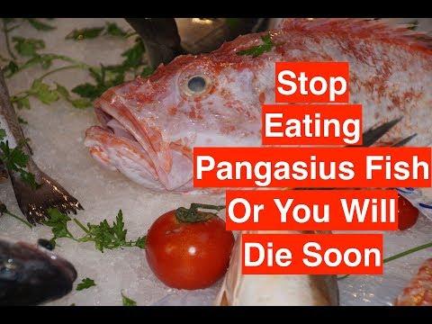 Paraziták megelőző kezelése