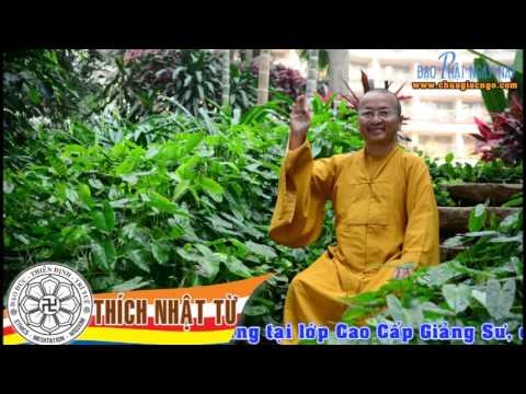 Sư Phạm Giáo Lý Phật Giáo: Chuyện minh họa trong hoằng pháp (06/04/2006)