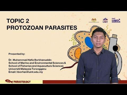 Paalisin parasites mula sa mga review na katawan