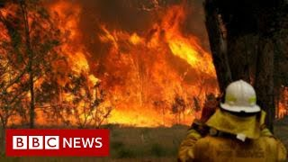 Australia fires: Morrison heckled by bushfire victims  - BBC News