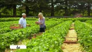 Annabel Langbein - The Free Range Cook: Through the Seasons - TV One Promo