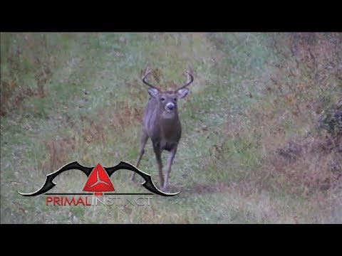 "Primal Instinct S7:E2 ""Philly Bucks"" (2017)"