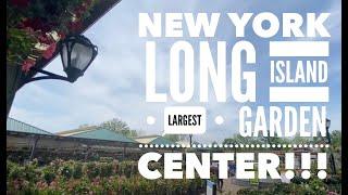 Long Island's Largest Garden Center | Hicks Nursery | Westbury NY | June 2020
