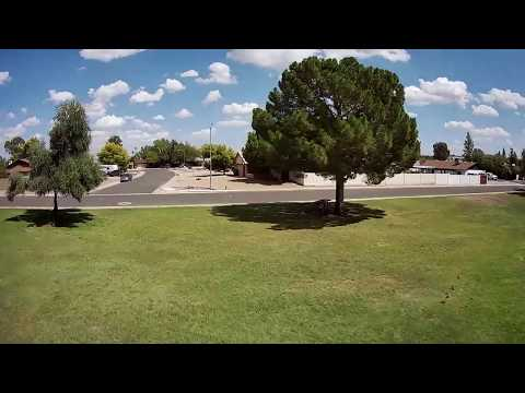 Geprc Cinepro 4k - FPV Afternoon Park Flight Birds Flocking & Trees