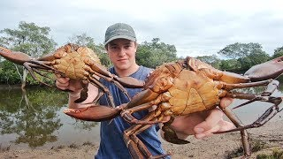 EP 9 - GIANT MUDCRAB HAUL - Cooked Up in the Mangroves | Catch n Fry