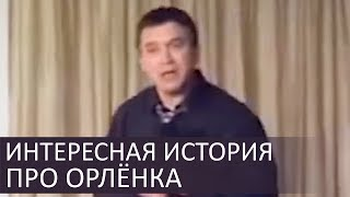 Интересная история про маленького орлёнка - Сергей Гаврилов
