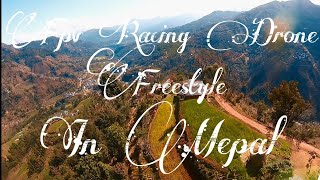 Fpv Freestyle | Fpv Drone in Nepal | Flying Over Fields | #jaiminifpv #fpvnepal #fpv #fpvbaglung