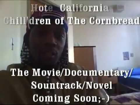 Hotel California:Videos From An Insane Asylum - sample Part 1 -