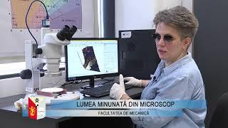 Lumea minunată din microscop