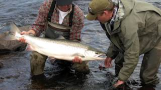 Рыбалка на лосося в краснодарский край базы отдыха