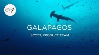 My travels in the Galapagos, 2017