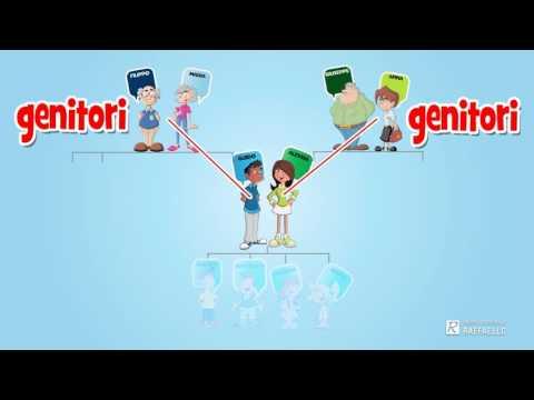 Scienze cognitive sesso video