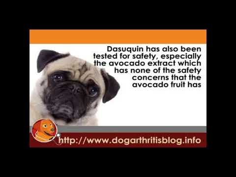 3-PACK Dasuquin for Large Dogs 60 lbs. & over with MSM (252 Chewable Tabs) Video
